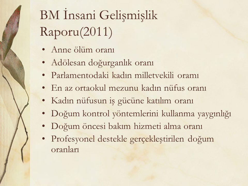 BM İnsani Gelişmişlik Raporu(2011)