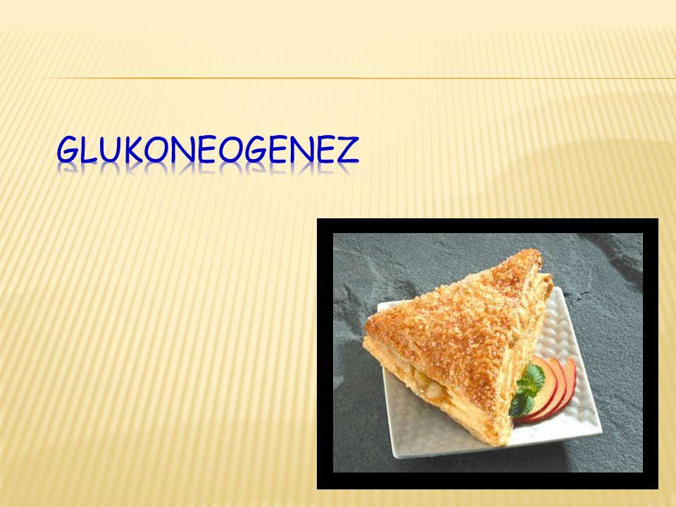 Glukoneogenez