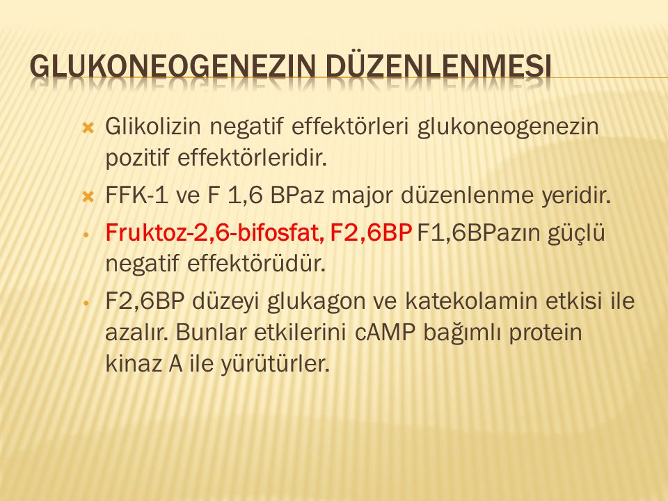 Glukoneogenezin Düzenlenmesi