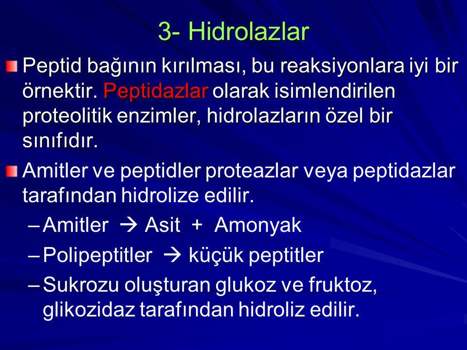 3- Hidrolazlar