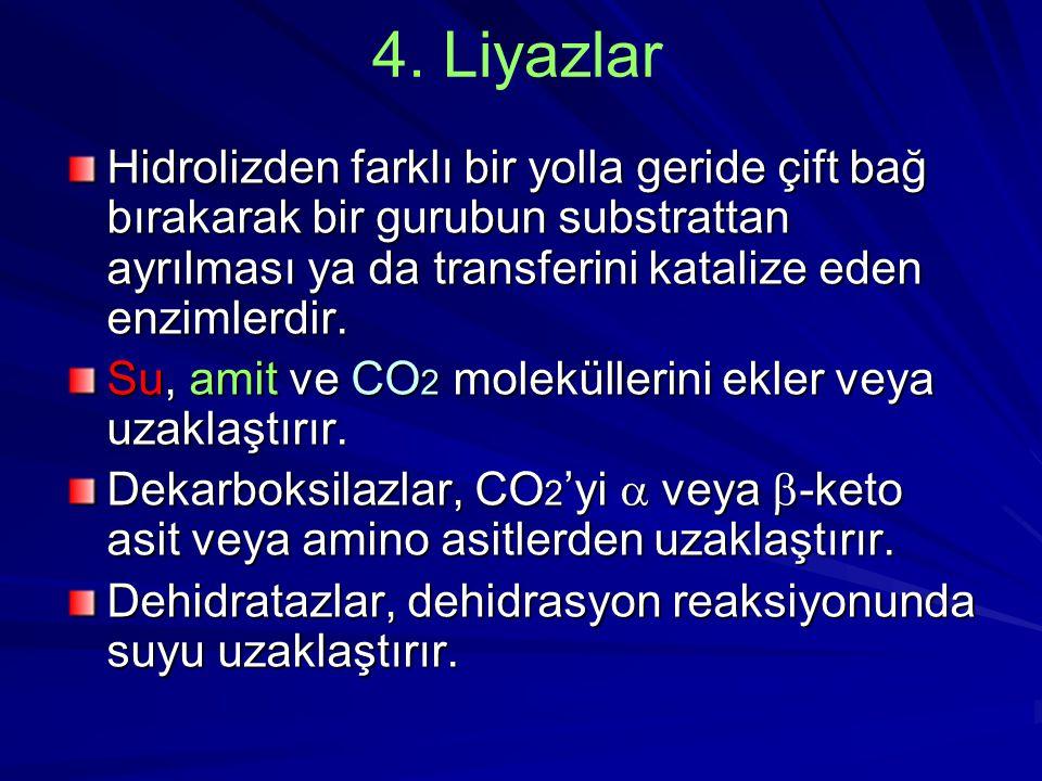 4. Liyazlar Hidrolizden farklı bir yolla geride çift bağ bırakarak bir gurubun substrattan ayrılması ya da transferini katalize eden enzimlerdir.