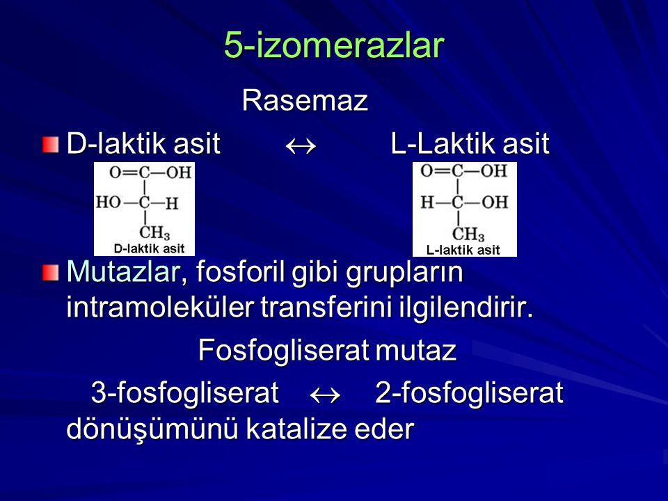 5-izomerazlar Rasemaz D-laktik asit  L-Laktik asit