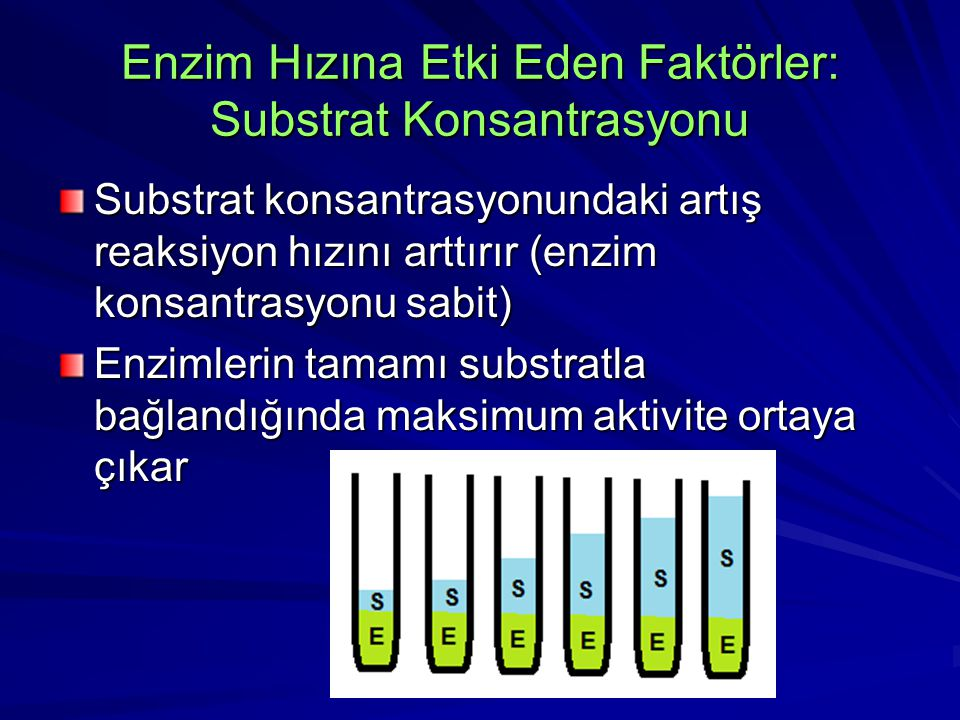 Enzim Hızına Etki Eden Faktörler: Substrat Konsantrasyonu