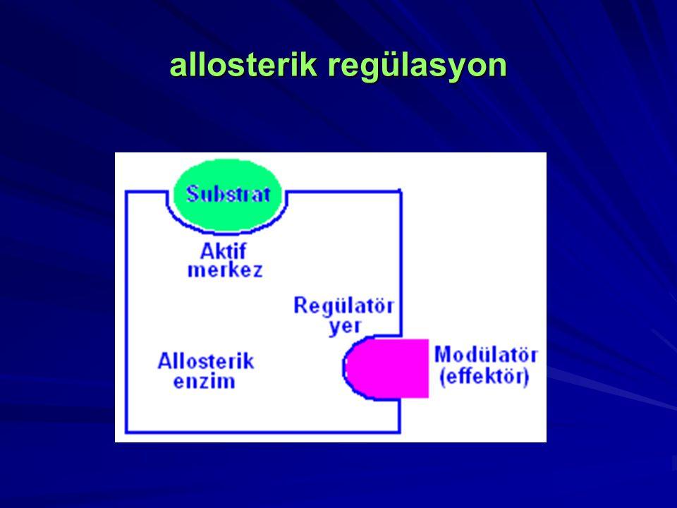 allosterik regülasyon