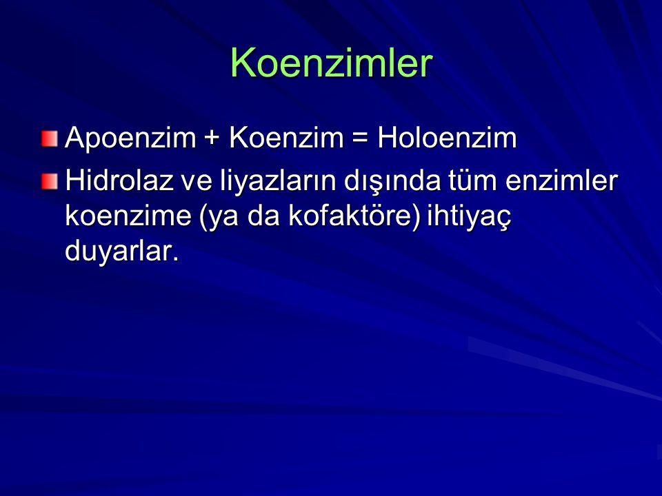 Koenzimler Apoenzim + Koenzim = Holoenzim