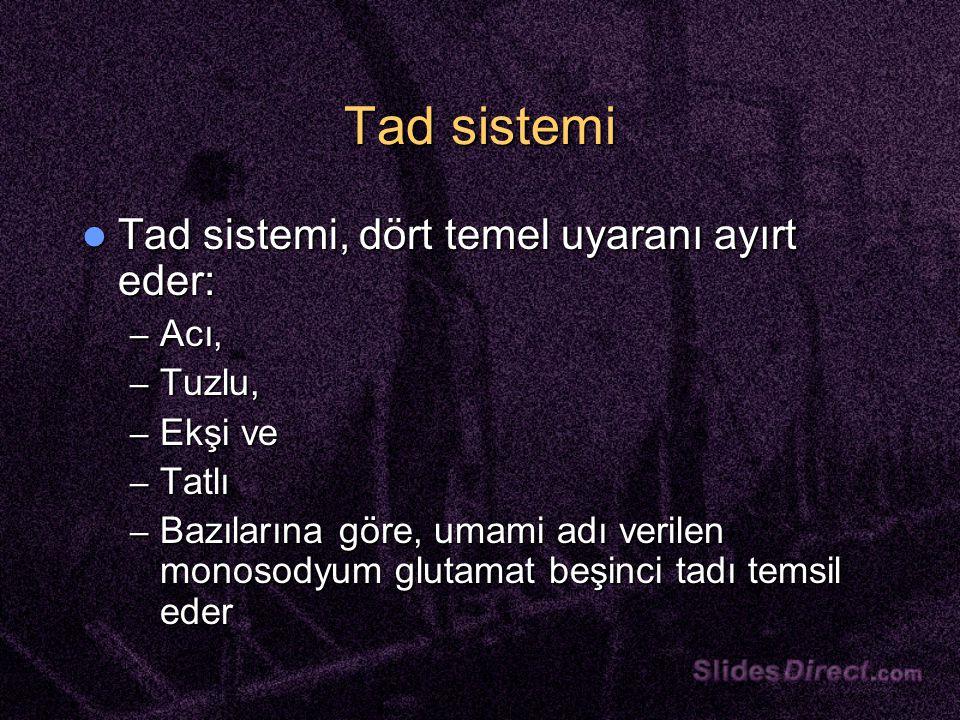Tad sistemi Tad sistemi, dört temel uyaranı ayırt eder: Acı, Tuzlu,