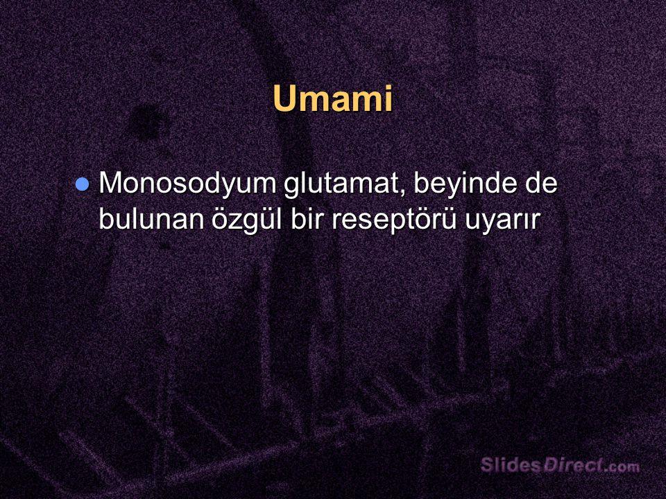 Umami Monosodyum glutamat, beyinde de bulunan özgül bir reseptörü uyarır