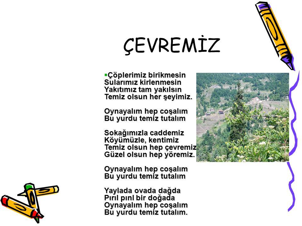 ÇEVREMİZ