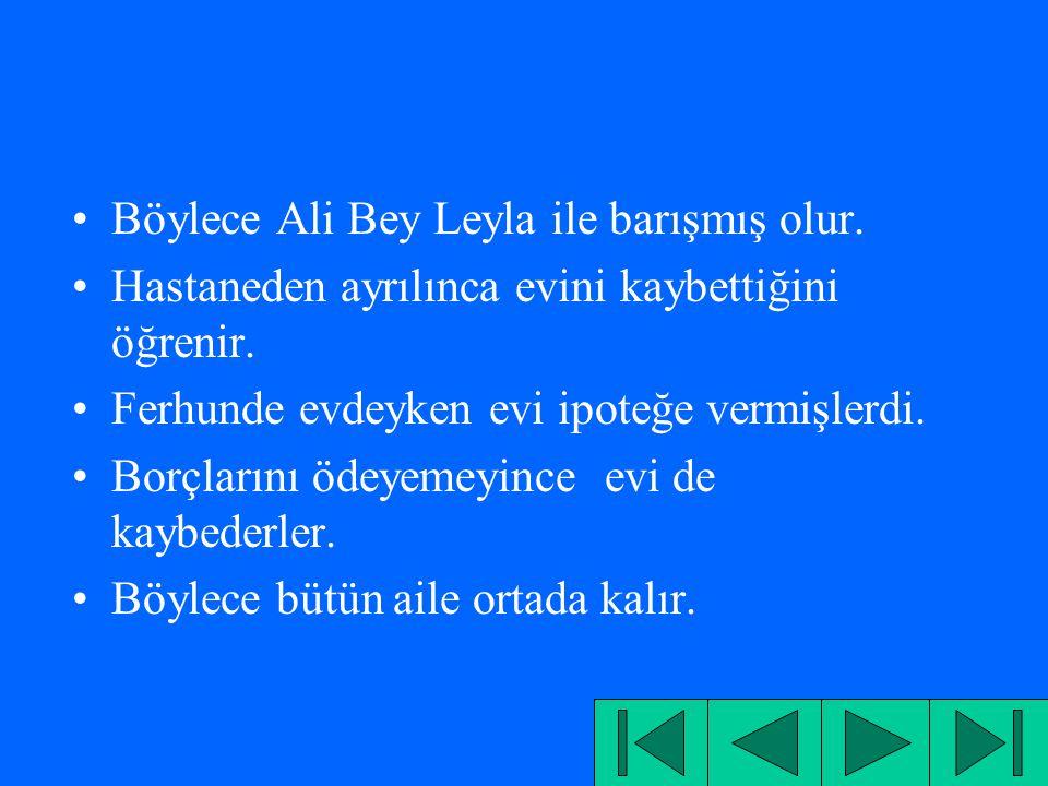 Böylece Ali Bey Leyla ile barışmış olur.