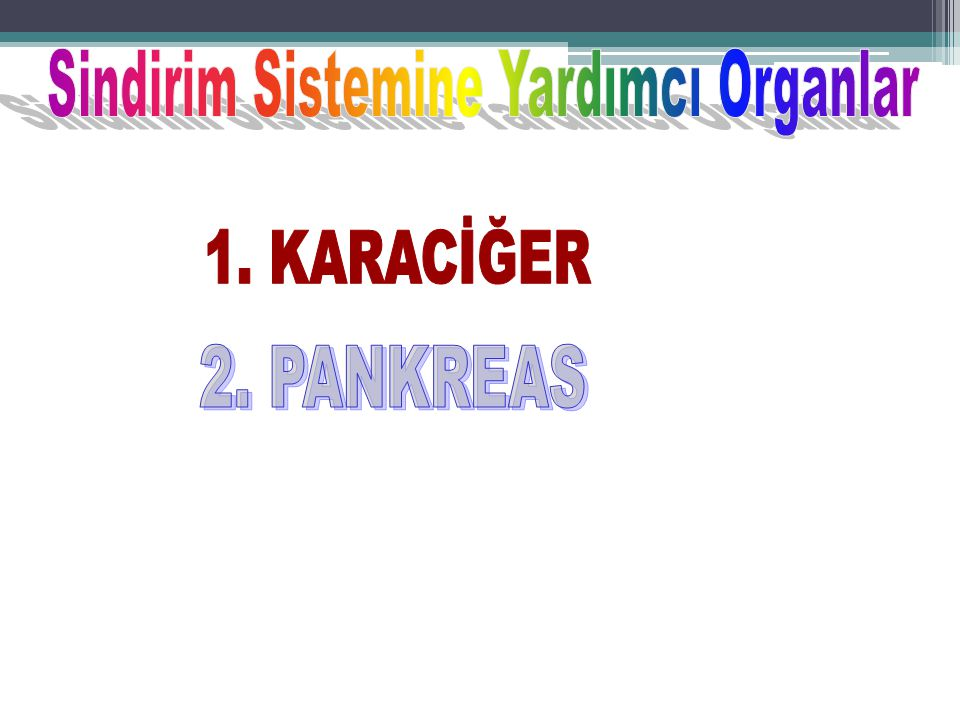 Sindirim Sistemine Yardımcı Organlar