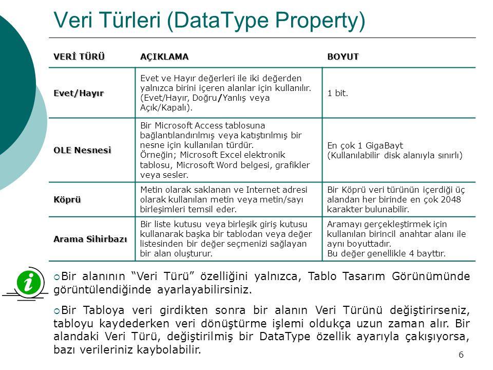 Veri Türleri (DataType Property)