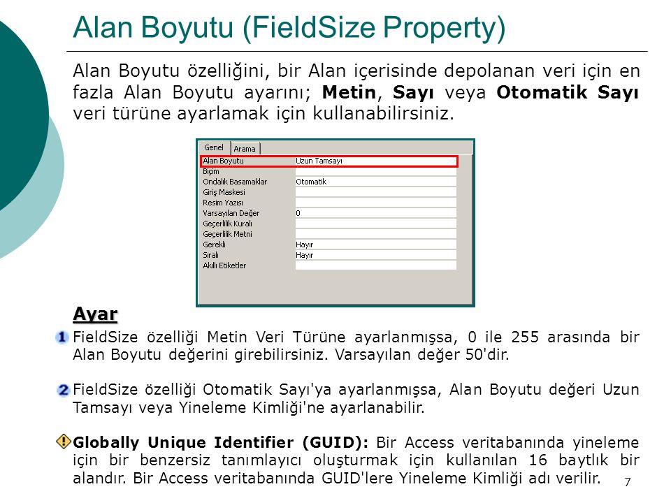 Alan Boyutu (FieldSize Property)