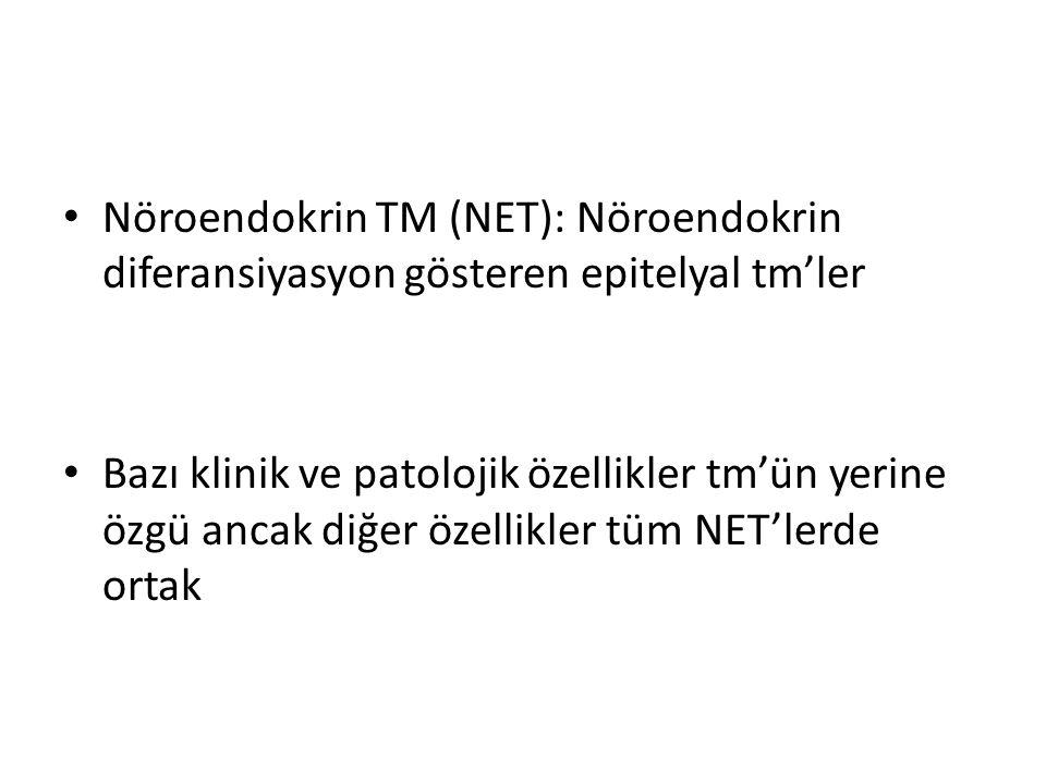 Nöroendokrin TM (NET): Nöroendokrin diferansiyasyon gösteren epitelyal tm'ler