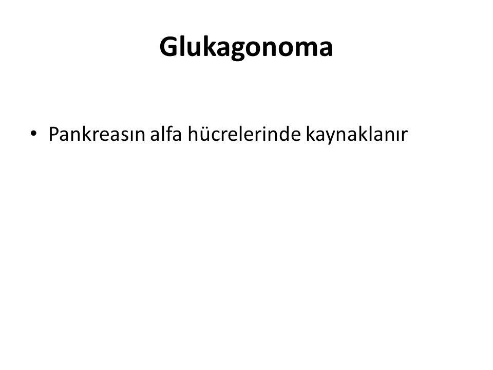 Glukagonoma Pankreasın alfa hücrelerinde kaynaklanır