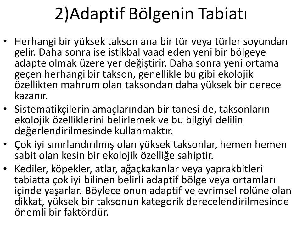 2)Adaptif Bölgenin Tabiatı