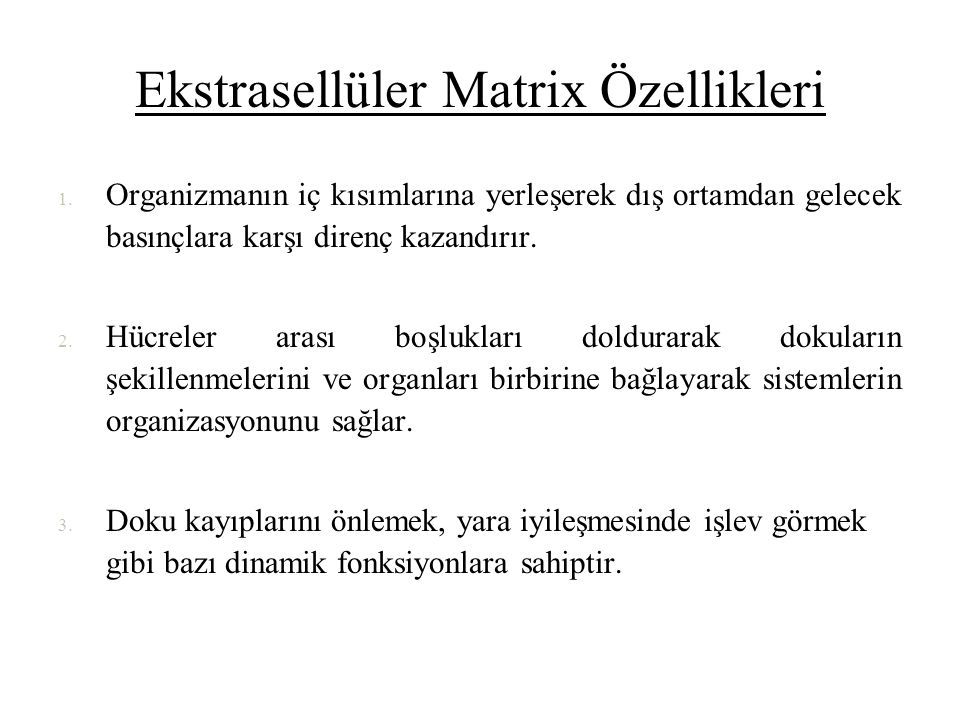 Ekstrasellüler Matrix Özellikleri