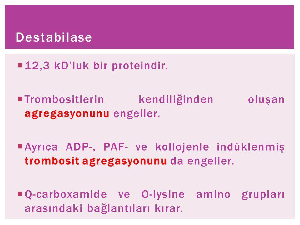 Destabilase 12,3 kD'luk bir proteindir.