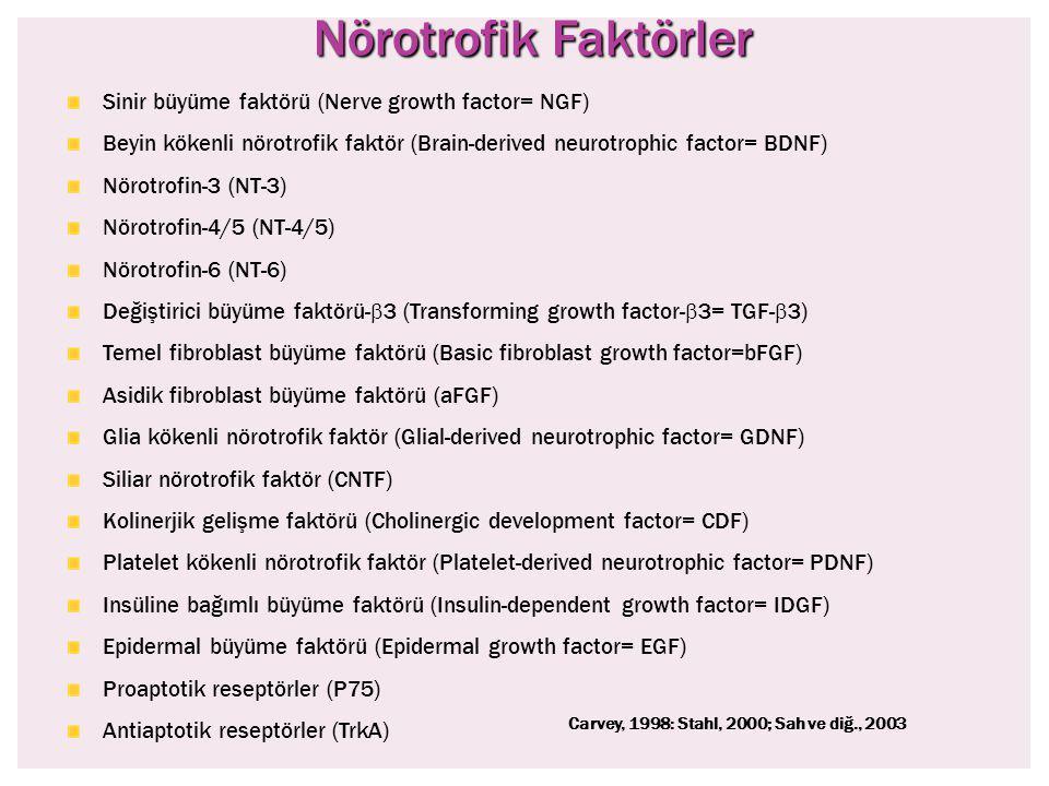 Nörotrofik Faktörler Sinir büyüme faktörü (Nerve growth factor= NGF)