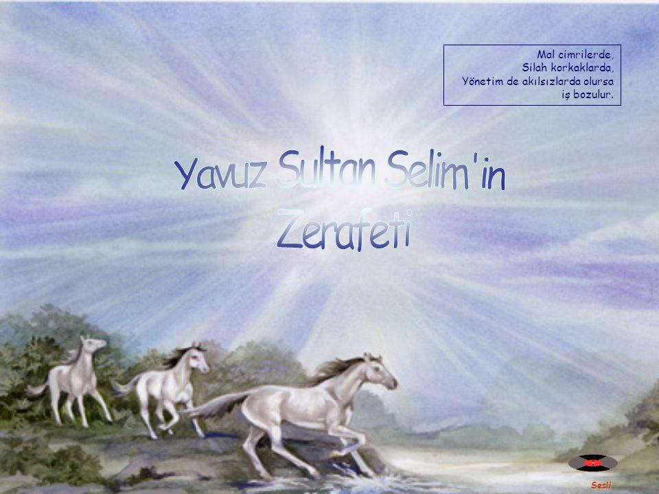 Yavuz Sultan Selim in Zerafeti Mal cimrilerde, Silah korkaklarda,