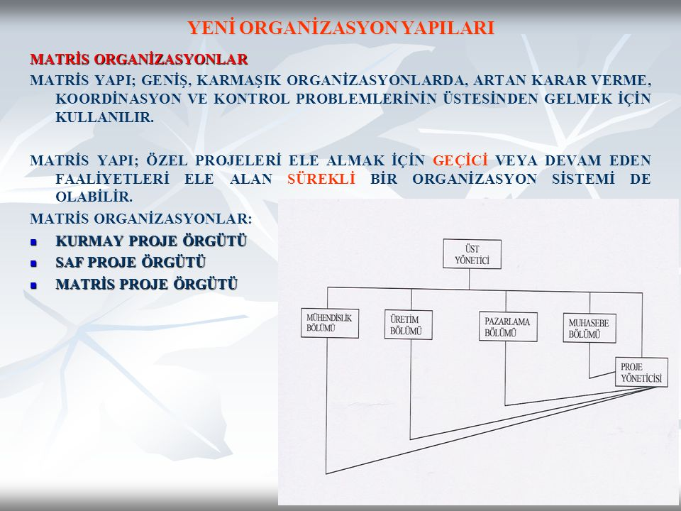 YENİ ORGANİZASYON YAPILARI
