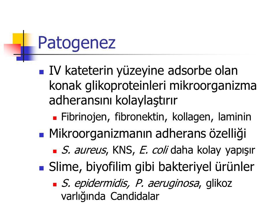 Patogenez IV kateterin yüzeyine adsorbe olan konak glikoproteinleri mikroorganizma adheransını kolaylaştırır.