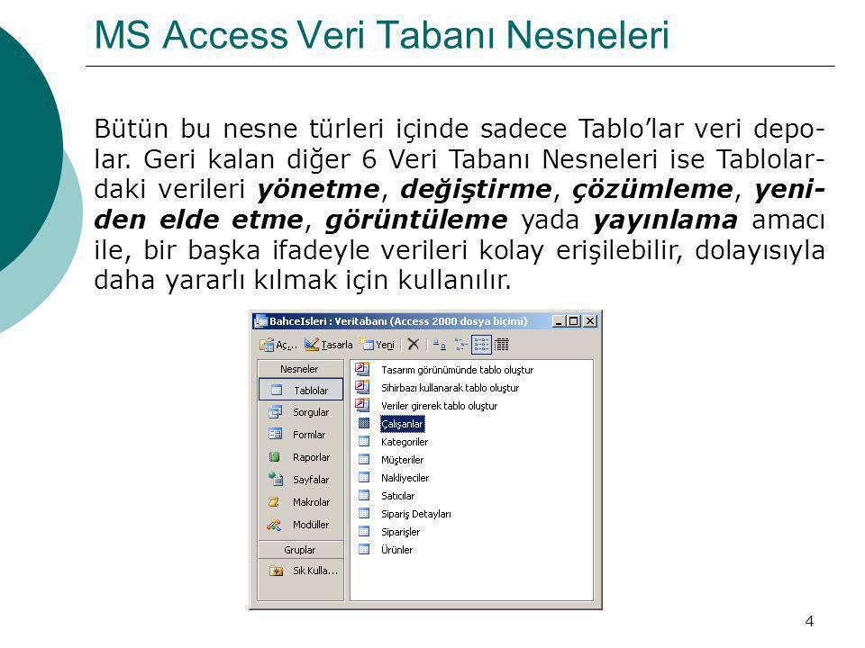 MS Access Veri Tabanı Nesneleri