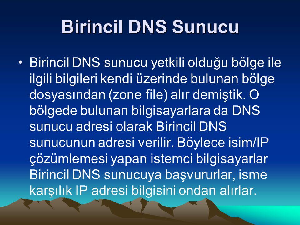 Birincil DNS Sunucu