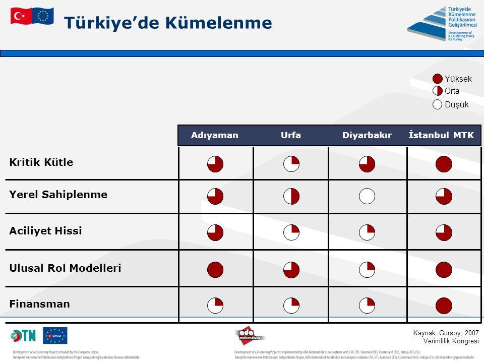 Türkiye'de Kümelenme Kritik Kütle Yerel Sahiplenme Aciliyet Hissi