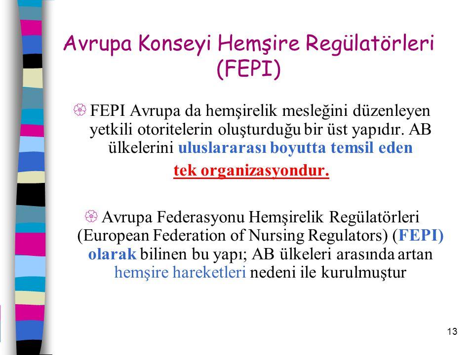 Avrupa Konseyi Hemşire Regülatörleri (FEPI)