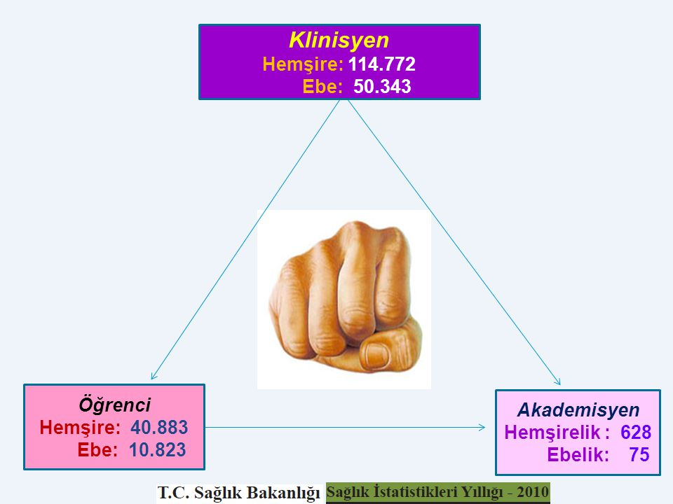 Klinisyen Hemşire: 114.772 Ebe: 50.343 Öğrenci Akademisyen