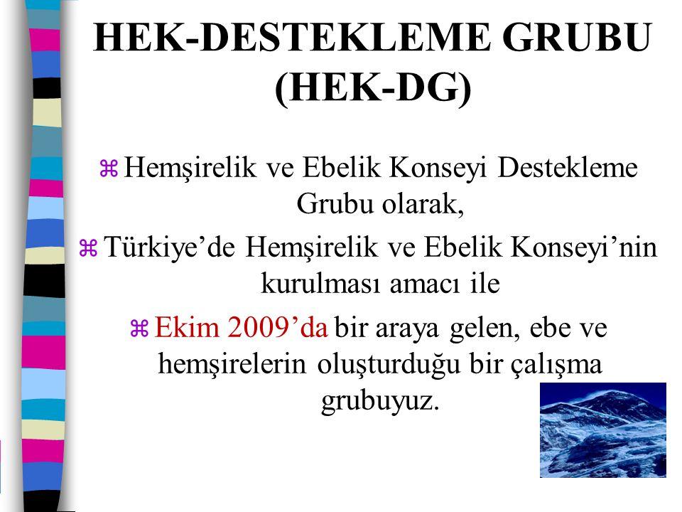 HEK-Destekleme Grubu (HEK-DG)