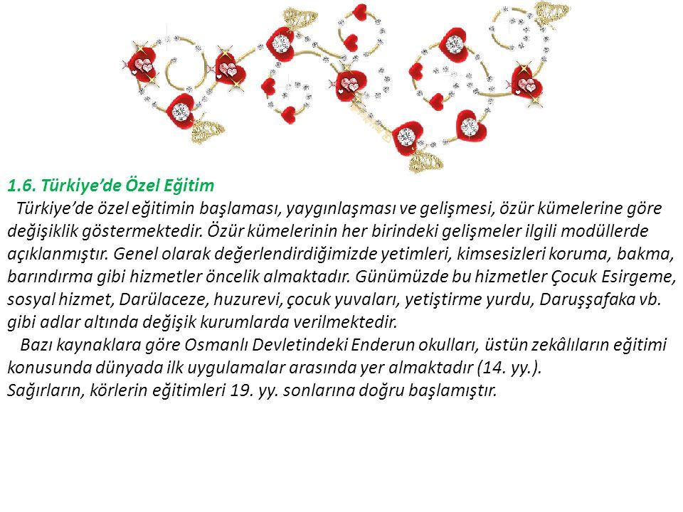 1.6. Türkiye'de Özel Eğitim