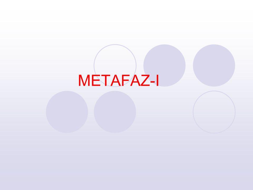 METAFAZ-I