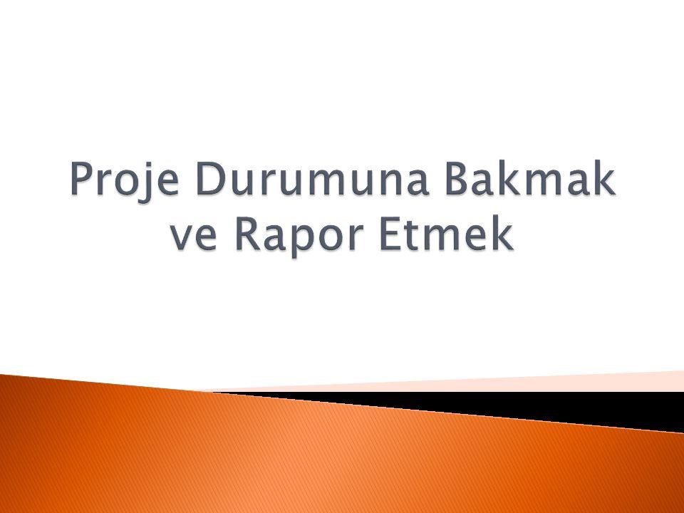 Proje Durumuna Bakmak ve Rapor Etmek