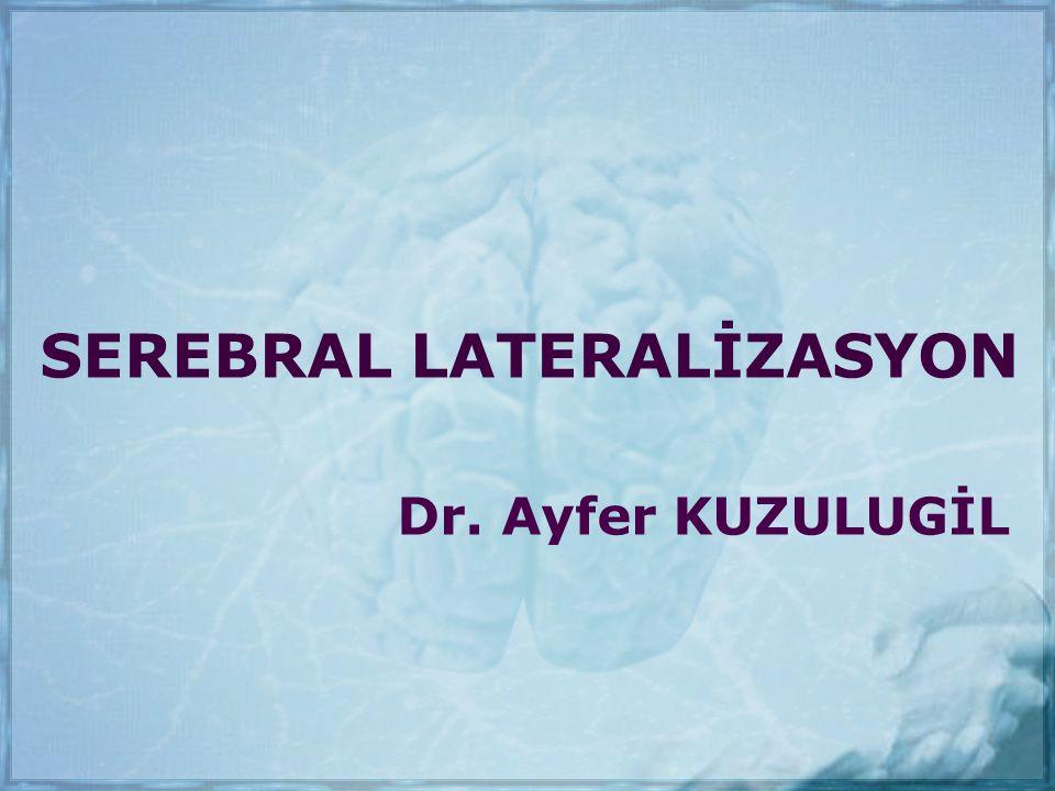 SEREBRAL LATERALİZASYON