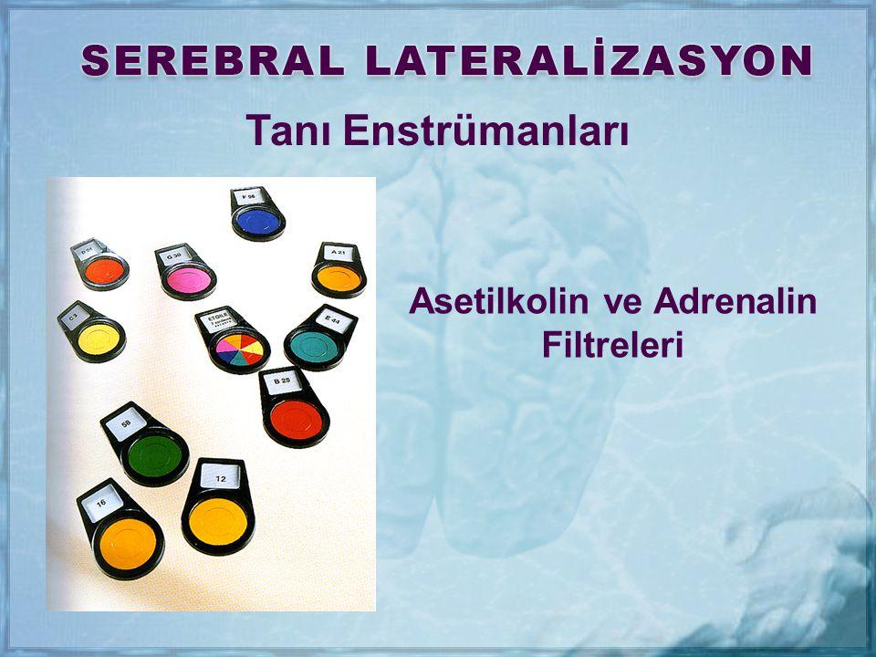 Asetilkolin ve Adrenalin