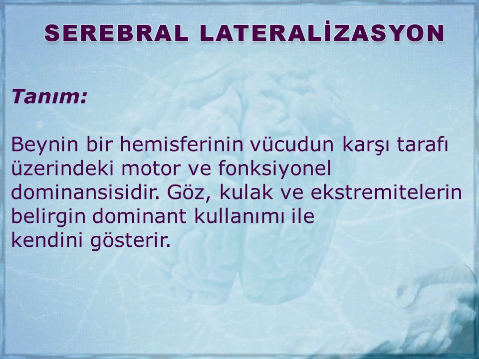 Tanım: Beynin bir hemisferinin vücudun karşı tarafı. üzerindeki motor ve fonksiyonel. dominansisidir. Göz, kulak ve ekstremitelerin.