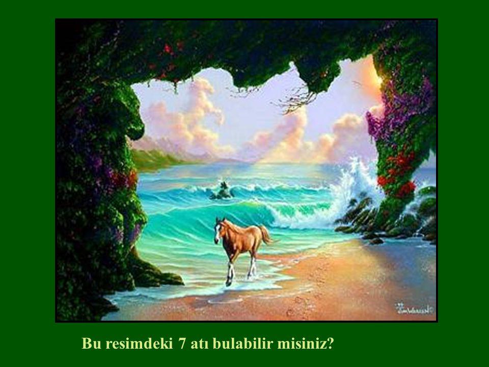 Bu resimdeki 7 atı bulabilir misiniz