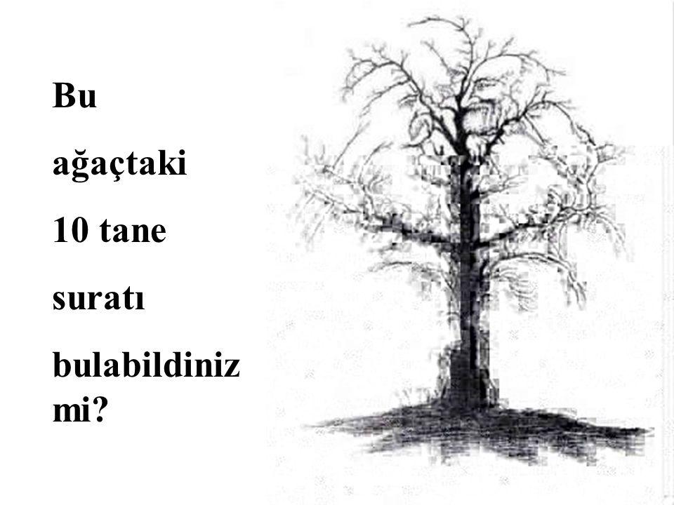 Bu ağaçtaki 10 tane suratı bulabildiniz mi