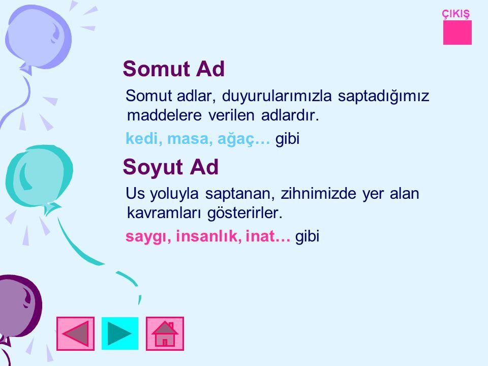 Somut Ad Somut adlar, duyurularımızla saptadığımız maddelere verilen adlardır. kedi, masa, ağaç… gibi.