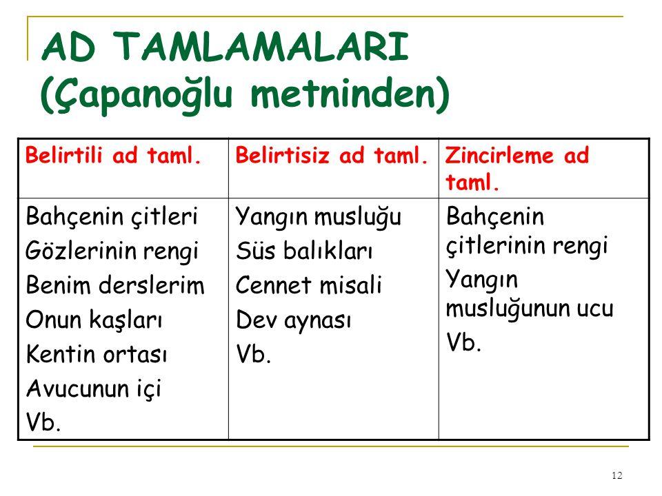 AD TAMLAMALARI (Çapanoğlu metninden)