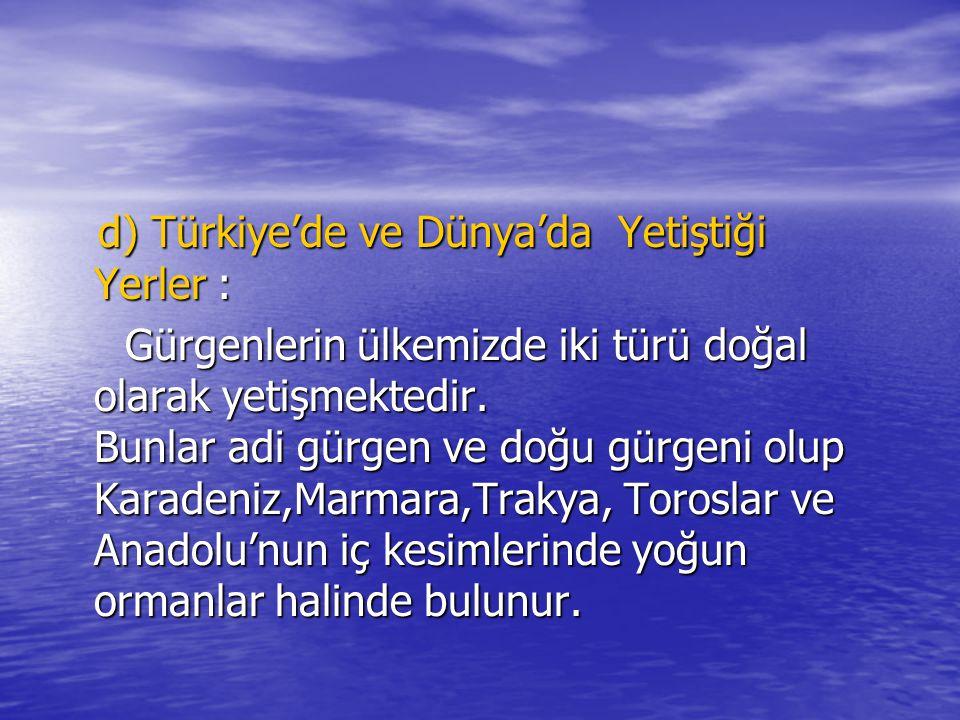 d) Türkiye'de ve Dünya'da Yetiştiği Yerler :