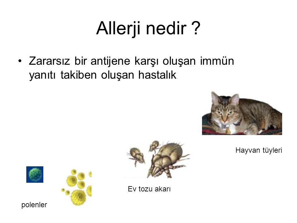 Allerji nedir Zararsız bir antijene karşı oluşan immün yanıtı takiben oluşan hastalık. Hayvan tüyleri.