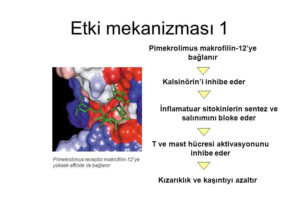 Etki mekanizması 1 Pimekrolimus makrofilin-12'ye bağlanır
