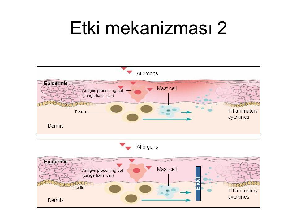 Etki mekanizması 2 Allergens Epidermis Mast cell Inflammatory