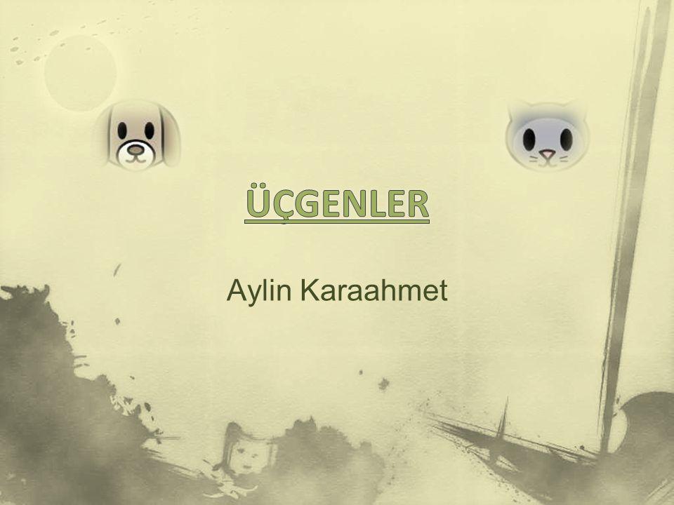 ÜÇGENLER Aylin Karaahmet