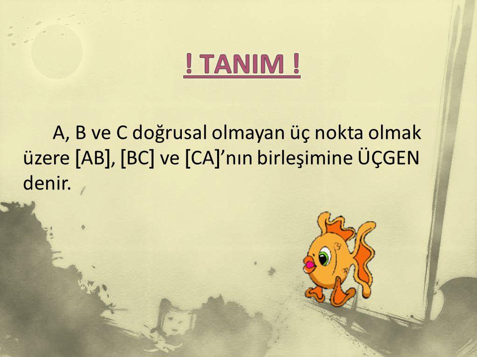 TANIM .