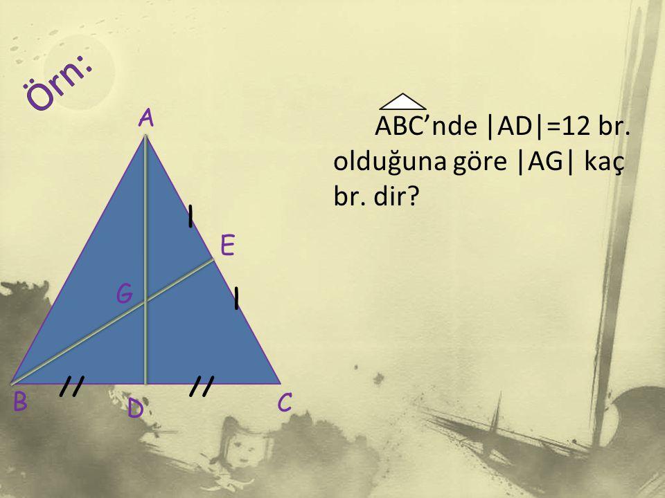 Örn: ABC'nde |AD|=12 br. olduğuna göre |AG| kaç br. dir A / E G / //
