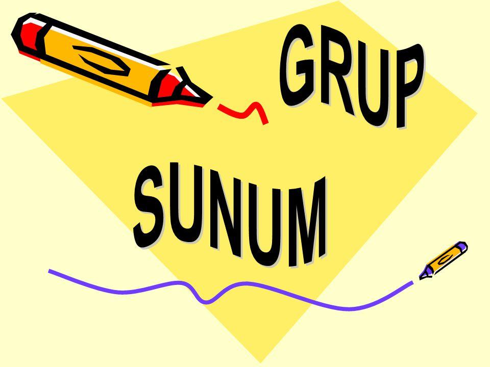 GRUP SUNUM