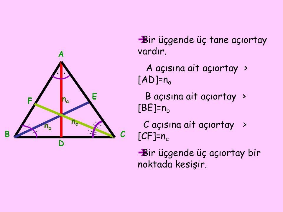 Bir üçgende üç tane açıortay vardır.